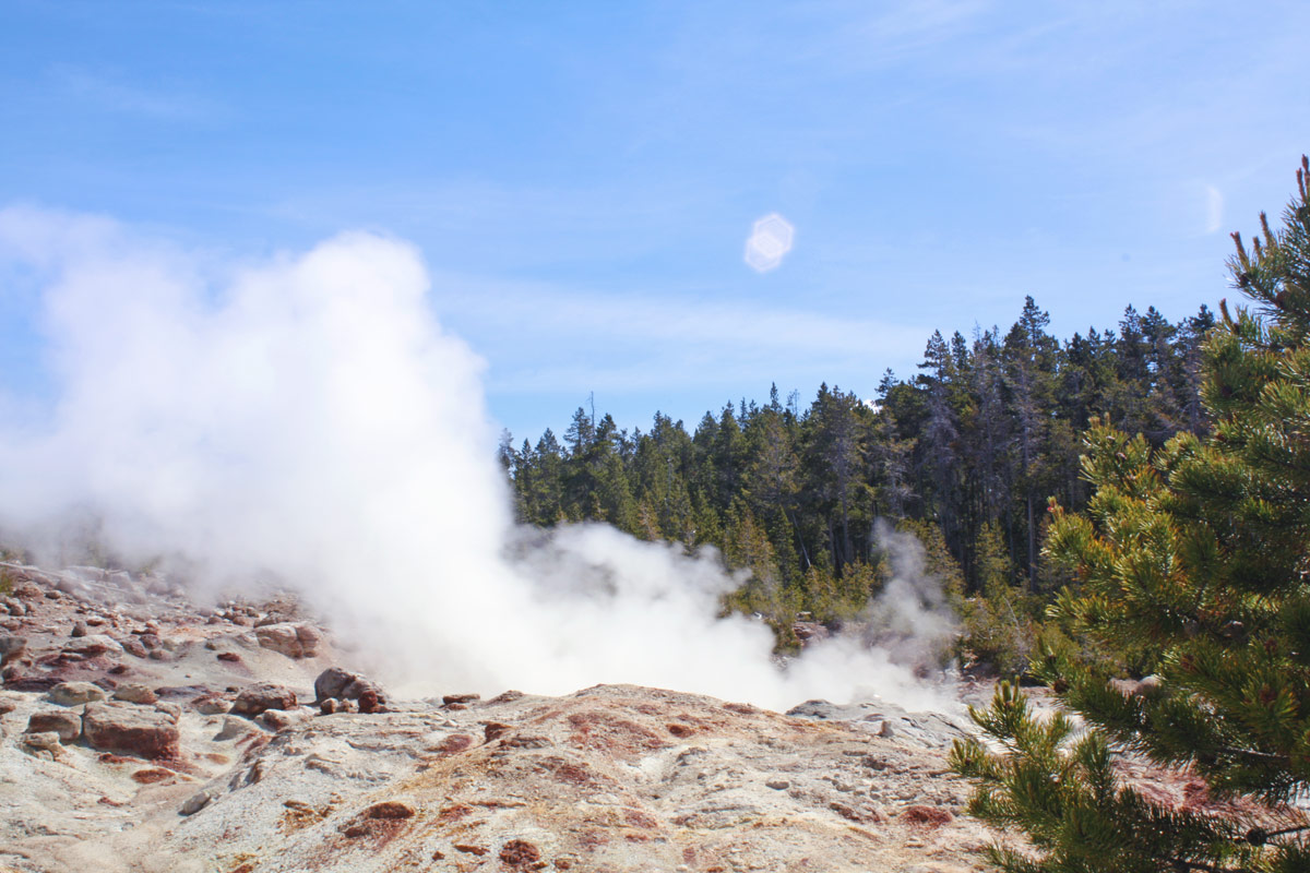 steaming geyser at yellowstone national park