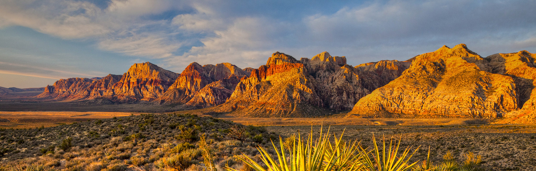Sunset on Red Rocks. The hills are illuminated gold and pink, while the foreground of sage and yucca glows yellow.